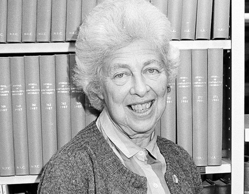 Dr Brigitte 'Ita' Askonas, 1923-2013