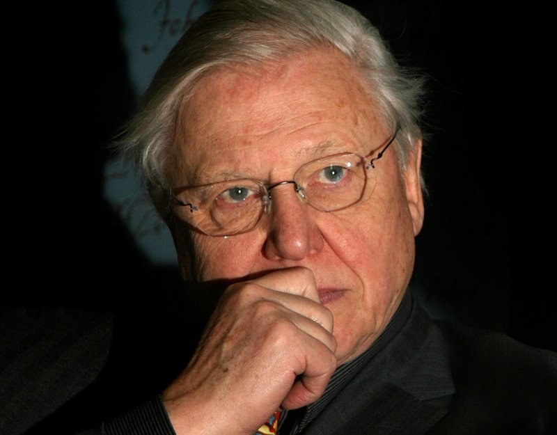 Sir David Attenborough (image by Cate Gillon)