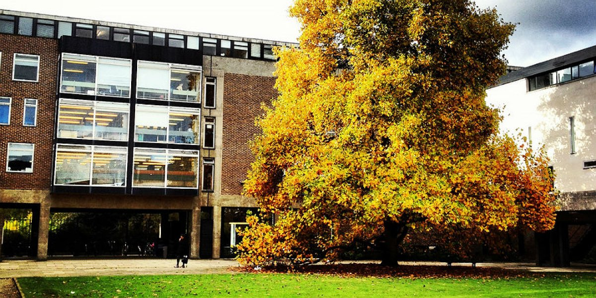 Faculty of Economics building, Sidgwick Site
