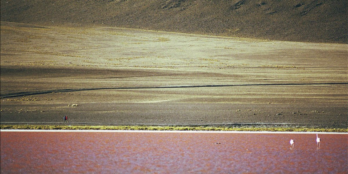 Rory, Bolivia